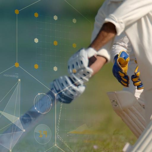 Frome Cricket Club Launch New Website